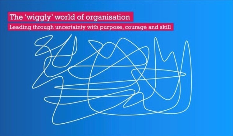 Wiggly World of Organization – The webinar!